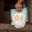 Scutece asortate cu hainutele, ultima moda pentru bebelusi, la cel mai mare targ de profil din tara